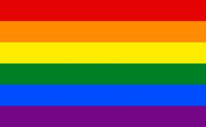 Rainbow Pride LGBT Flag